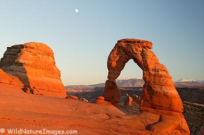Delicate Arch National Park, Utah.