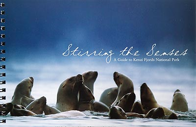Stirring of the Senses Book