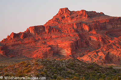 Red Mountain Photos