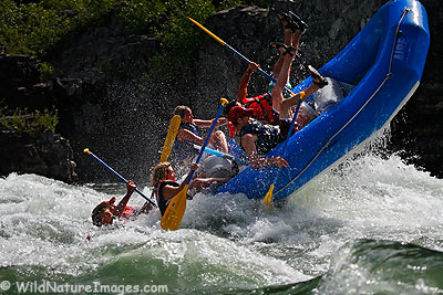 White water rafting on the Snake River.