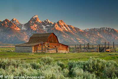barn in grand teton national park - photo blog - niebrugge images
