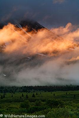 Tatshenshini-Alsek Wilderness Provincial Park Photos