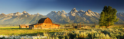 Barn Panoramic, Grand Teton National Park