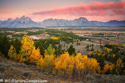Fall Teton Sunrise
