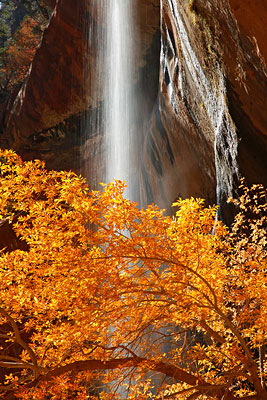 Emerald Pools, Zion National Park, Utah