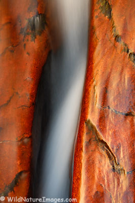 Crack with Water, Zion National Park