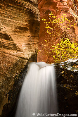 Waterfall near Zion